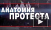 «Анатомия протеста-2»: оппозиция готовила захват власти и теракты