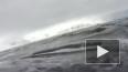 Мир глазами китов опубликовали в интернете