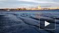 В Петербурге аномально поднялся уровень воды в Неве