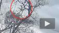 Появилось видео крушения грузового Boeing, на борту ...