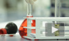 Перенесшие ишемический инсульт петербуржцы будут получать бесплатные лекарства