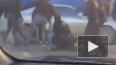 Задиристое видео из Якутска: несколько парней устроили ...
