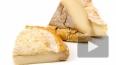 Сыр, произведенный до нашей эры, нашли на груди китайской ...
