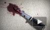16-летний юнец зарезал заслуженного художника по прихоти своей 19-летней подруги