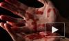 В Самарской области от рук догхантера погибла женщина, вступившаяся за собак