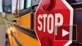 Троих девочек на пешеходном переходе задавил насмерть ...