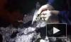 Полиция Петербурга разоружила 160 любителей незаконной стрельбы