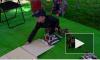 Видео: выборгские дети познакомились с роботами в День защиты детей