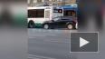 На площади Восстания автобус подрезал троллейбус
