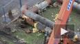 Комитет по энергетике запретил копать землю в новогодние ...