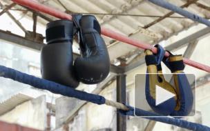 Чемпион России по боксу напал на сотрудника Росгвардии в Москве