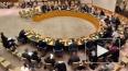 Совбез ООН отказался обратить внимание на массовую ...