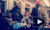Человек-паукв новогодней шапке удивил петербуржцев в метро