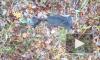 На Камчатке обнаружены одежда и останки 5-летнего ребенка, который пропал летом