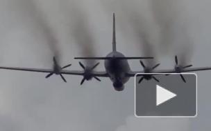 Все 15 военных, которые находились на борту пропавшего в Сирии Ил-20, погибли