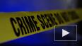 В Германии неизвестный расстрелял посетителей кафе