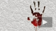 Среди подростков, убивших мигранта мачете, была 15-летняя ...