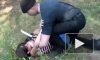 В Петербурге мигрант изнасиловал 11-летнюю девочку