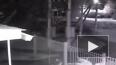 Видео: В Ставрополье погиб подросток, при попытке ...