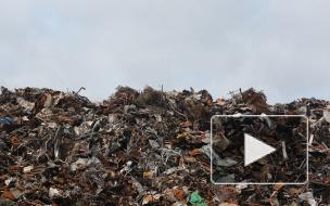 Генпрокуратура заявила об угрозе мусорного коллапса