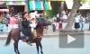 Кульбит на коне