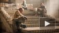 """""""Игра престолов"""", 5 сезон: 10 серия завершает очередную ..."""
