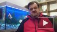 Василий Уткин вызвал Владимира Соловьёва на баттл, ...