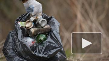 В 2019 году нормативы оплаты за вывоз мусора останутся прежними