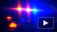 Полиция сообщила, что подозреваемый в стрельбе в больниц...