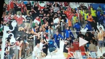 Перед матчем Исландия-Венгрия вспыхнули беспорядки
