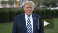 Трамп объяснил первое место США по случаям заражения ...