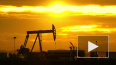 МИД РФ обвинил США в контрабанде сирийской нефти