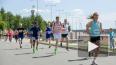 Зеленый марафон Сбербанка в Санкт-Петербурге: программа ...