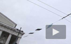 Под напором петербургского урагана ель на Дворцовой держится из последних сил