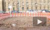 Собаки отказываются справлять нужду в песочницах на Васильевском