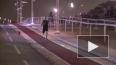 Безногий бегун обогнал лошадь на соревнованиях в Катаре