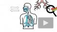 Ученые раскрыли новые тяжелые последствия коронавируса ...