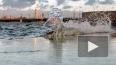 Петербургская дамба спасла от затопления Петроградскую ...