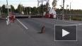 В Выборгском районе заметили лису, ожидающую поезда