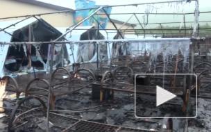 Число погибших детей при пожаре в палаточном лагере под Хабаровском выросло до четырех