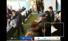 Веб-камера: Кадыров танцует на избирательном участке
