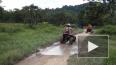 В Таиланде могут ввести обязательную туристическую ...