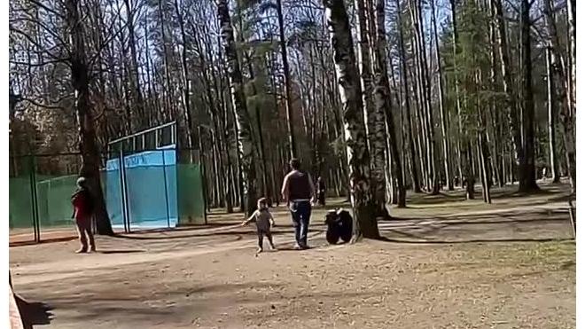 В Ленобласти задержан мужчина, избивший и бросивший своего сына на улице