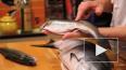 Роскачество дало советы по выбору рыбы и икры