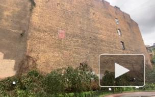 На улице Лизы Чайкиной обрушилась стена из дикого винограда, жители планируют ее восстановить