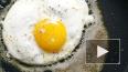 """Роскачество: """"Перед приготовлением нельзя мыть яйца, ..."""