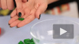 """Ученые: """"Витамин Е не обязательно употреблять одновременно ..."""