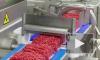 Антибиотики и листерии: Роскачество проверило мясной фарш