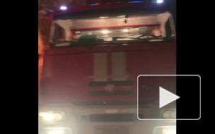 В Выборгском районе ночью сгорели бани