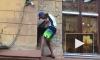 Видео: кота Елисея на Малой Садовой снова обокрали